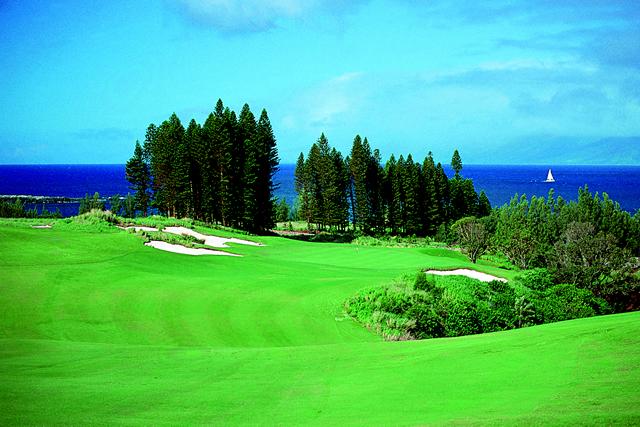 プランテーションコース ゴルフコース|カパルアリゾート!マウイの高級コンドミニアム